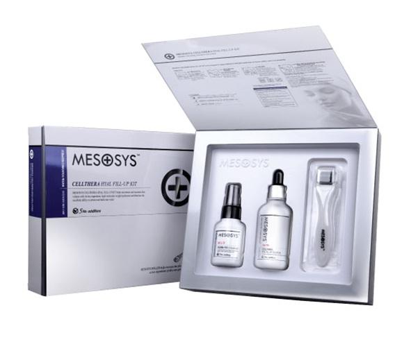 Mesosys2